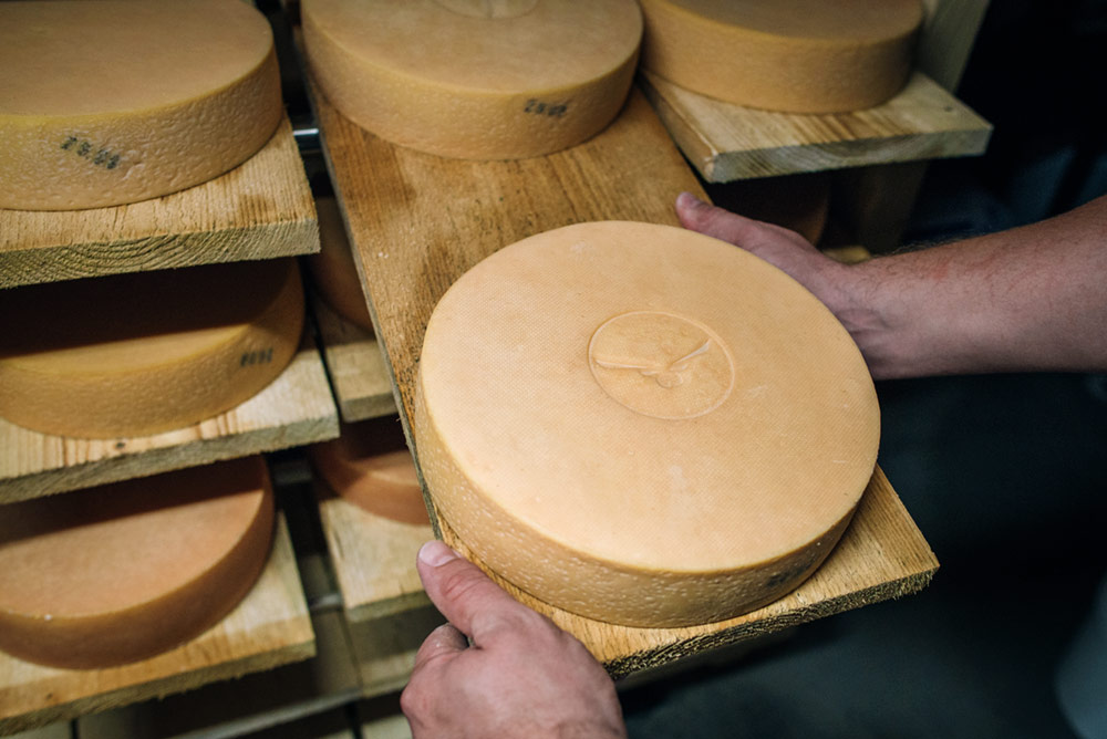 Marquage alimentaire sur fromage